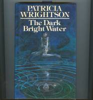 Image for The Dark Bright Water.