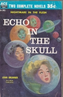 Image for Echo In The Skull/Rocket To Limbo.