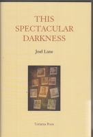 Image for This Spectacular Darkness: Critical Essays.